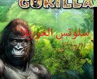 لعبة الغوريلا Gorilla Slot - Photo