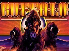 بافالو Buffalo Slot
