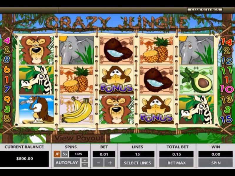 كريزي جنجل -crazy jungle