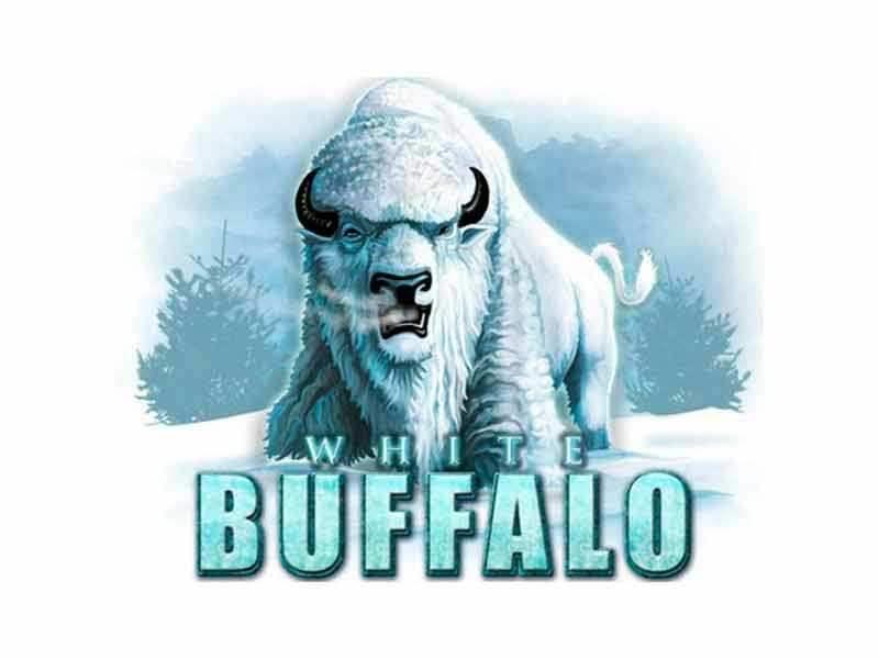 الجاموس الأبيض White-Buffalo