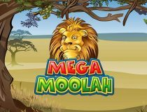 ميجا مولاه Mega Moolah Slot - Photo