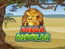 ميجا مولاه Mega Moolah Slot - Photo