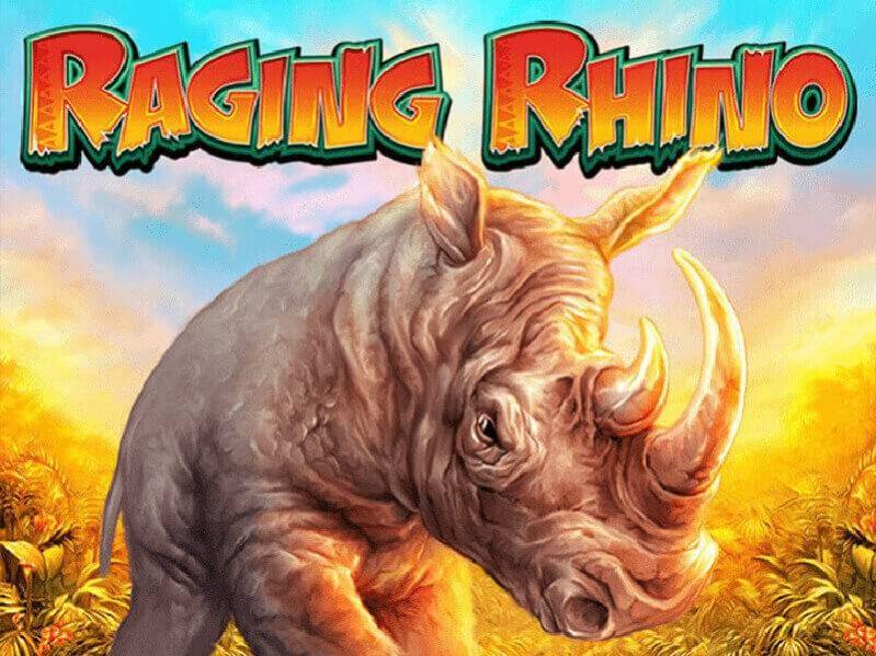 وحيد القرن الغضبان Raging Rhino