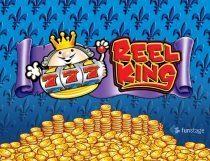 سلوتس بكرة الملك المتحركة Reel King Potty Slot - Photo