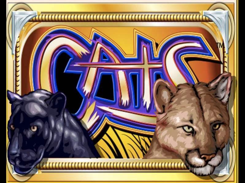 Cats Slot - لعبة ماكينات القمار