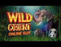 Wild Orient المشرق البري Slot - Photo