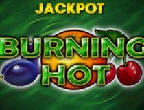 سلوت بيرننج هوت Burning Hot Slot - Photo