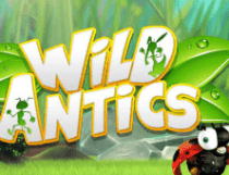 وايلد أنتيكس Wild Antics Slot - Photo