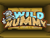 وايلد موميا Wild Mummy Slot - Photo